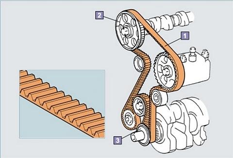 cơ cấu phối khí